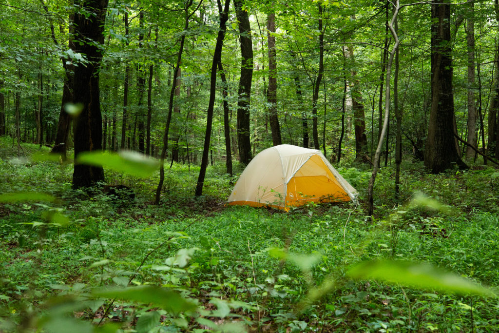Yellow backpacking tent in forest