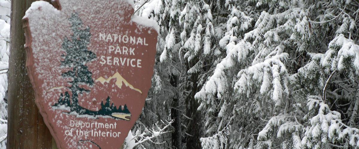 National Park Service arrowhead in snowy forest